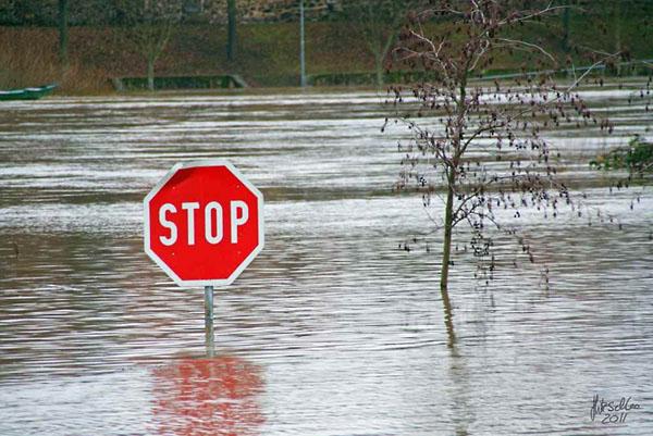 Климатические прогнозы