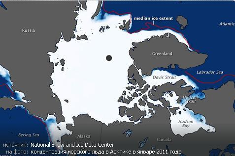 концентрация морского льда в Арктике в январе 2011 года