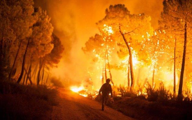 Нестабильность глобального климата - от морозов до пожаров