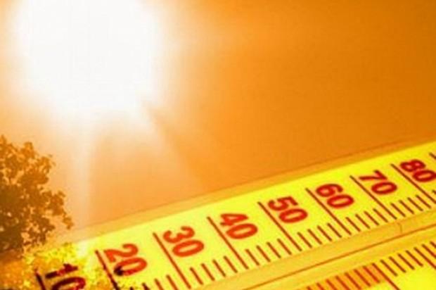 Способно ли человеческое тело выдержать 50-градусную жару?