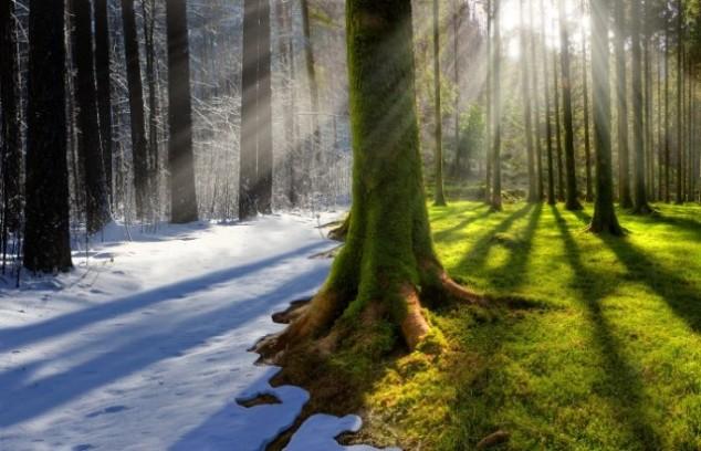 Правила акклиматизации из зимы в лето