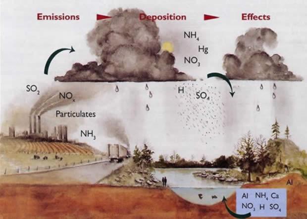 Кислотные дожди - откуда берется кислота