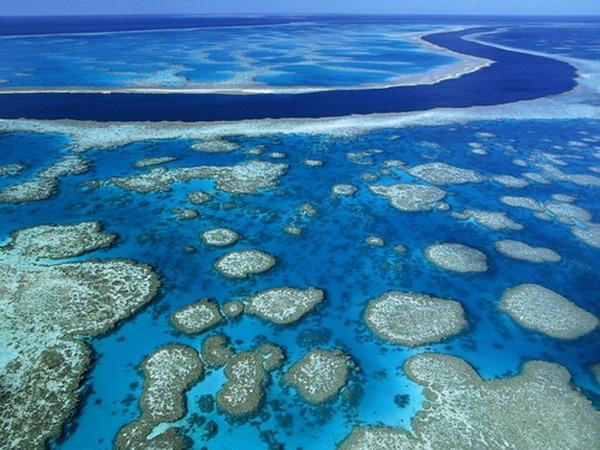 Уровень воды в океане стремительно растет