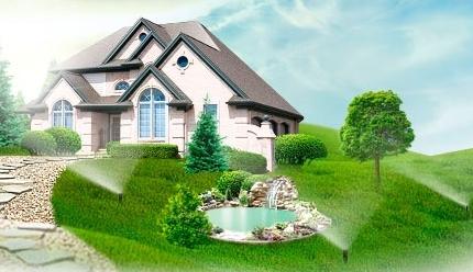 Экология жилища: живой зеленый газон