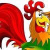 Красный огненный петух