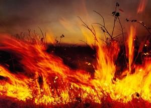 Планете грозит климатический ад