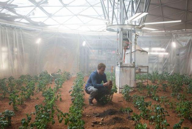 Ученые вырастили картофель на Марсе
