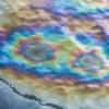 Загрязнение мирового океана: человечество в опасности