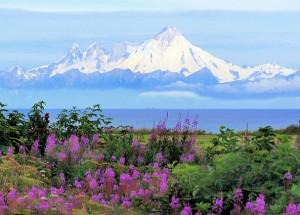 Аномальная жара на Аляске